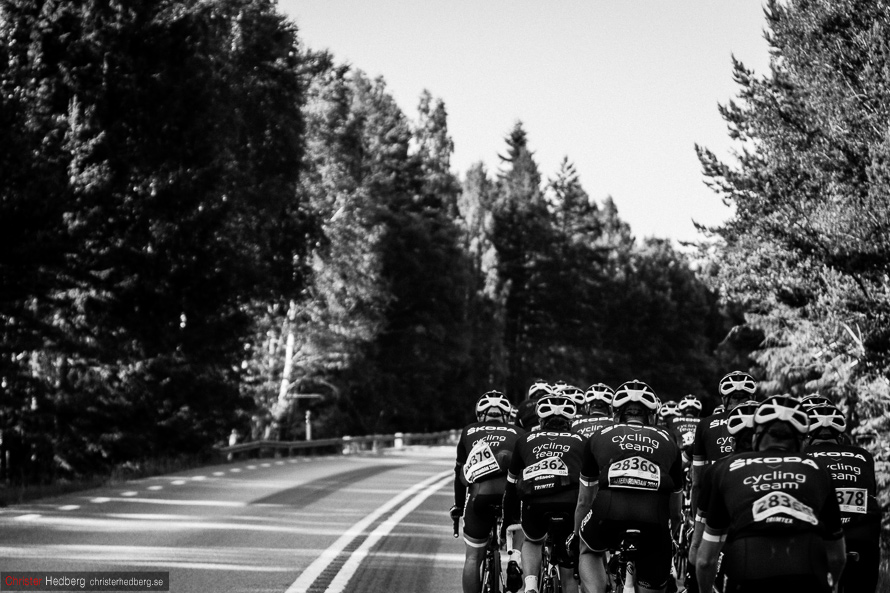 Skoda Cycling Team at Vätternrundan 2014. Photo: Christer Hedberg | christerhedberg.se